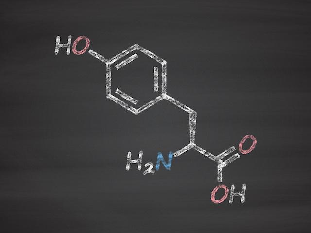 チロシンの効果と摂取上の注意点について