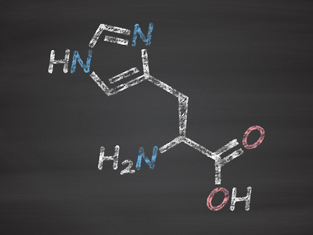 ヒスチジンの効果と摂取上の注意点について