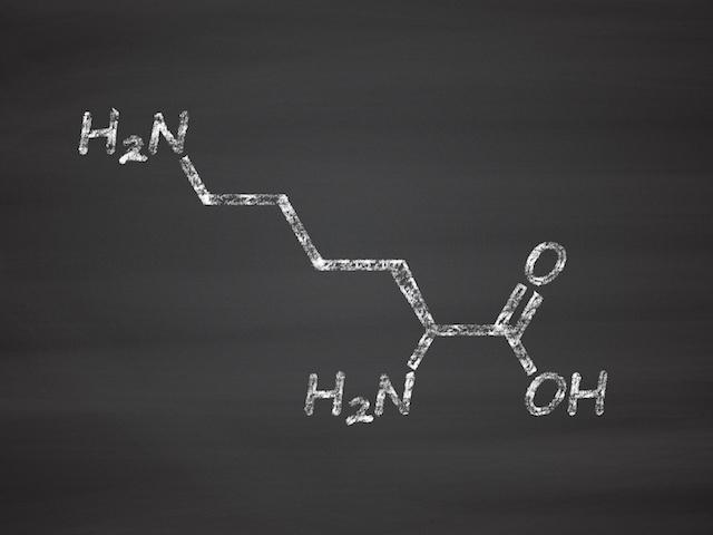 リジンの効果と摂取上の注意点について