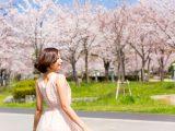 もうすぐ春!お花見でお酒と食べたいおつまみ決定版