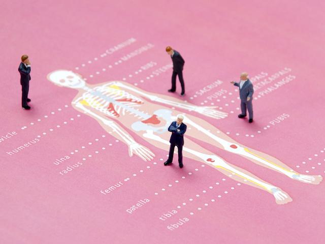 骨の健康を考えていますか?効果があるビタミンやミネラルについて知っておこう!